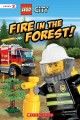 Go to record Fire in the forest!