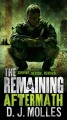 Go to record The remaining : aftermath