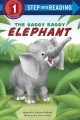 Go to record The saggy baggy elephant