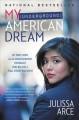 Go to record My (underground) American dream : my true story as an undo...