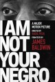 Go to record I am not your negro : a companion edition to the documenta...