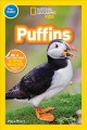 Go to record Puffins