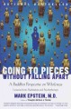 Go to record Going to pieces without falling apart : a Buddhist perspec...