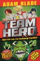 Go to record Battle for the shadow sword : Team Hero
