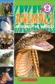Go to record Animals around the world